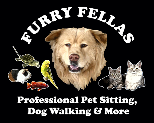 Furry Fellas Pet Service LLC